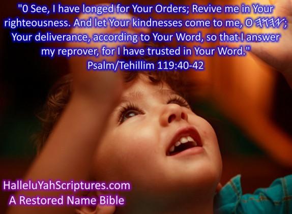 HalleluYah Scriptures Parallel + Hebrew Bible + Sacared Bible + Restored Name Bible + The Best Bible & Devine Name Bible + The Scriptures & Cepher Yahweh + Yahwah 19