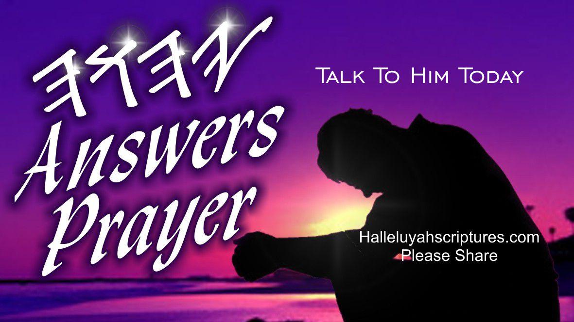 + HalleluYah Scriptures Review + Restored Name Bible + Best Bible + Cepher + The Scriptures + Hebrew Roots bible + Sacared Name Bible +Phillipians Group Pray