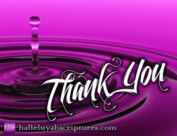 HalleluYah Scriptures Waterproof + Parallel + Hebrew Bible + Sacared Bible + Restored Name Bible + The Best Bible & Devine Name Bible Cepher bible audio bible Israel Bible 3a