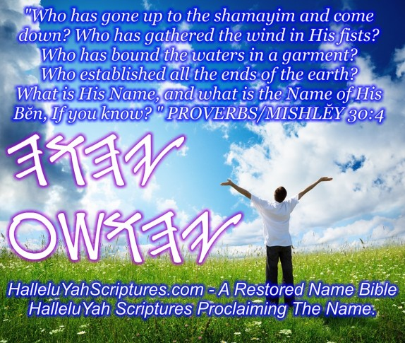 HalleluYah Scriptures Parallel + Hebrew Bible + Sacared Bible + Restored Name Bible + The Best Bible & Devine Name Bible + The Scriptures & Cepher Yahweh 9
